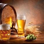 Особенности торговли пивом в 2018 году для ИП