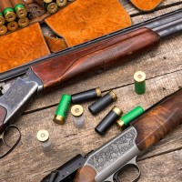 Нужная информация о лицензии на оружие