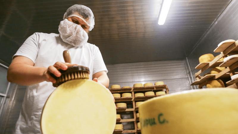 Итальянский сыровар