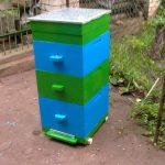 Многокорпусный улей для пчёл создаётся по принципу дупла и состоит из нескольких небольших отсеков